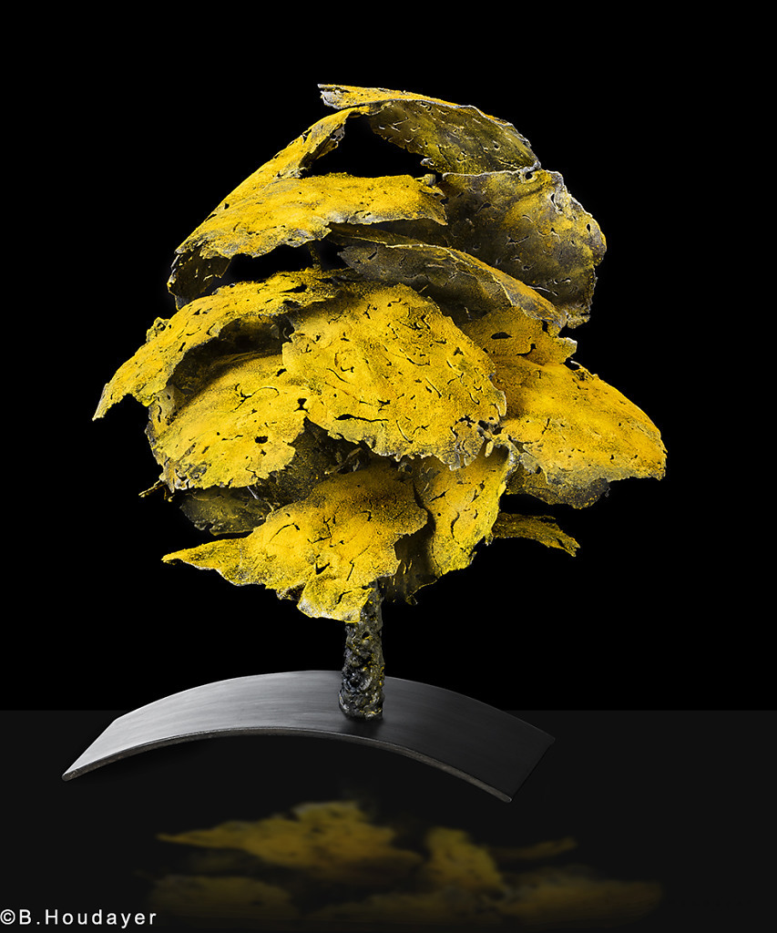 photographie des sculptures Danielle DELLANOYE